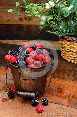 Berries in Pail on Rustic Wooden Table