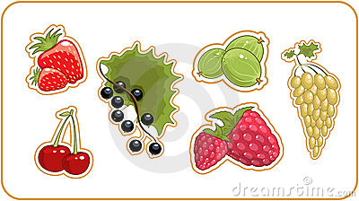 Berries set
