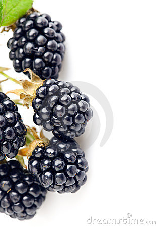 Free Berry Blackberry With Green Leaf Royalty Free Stock Images - 20834769