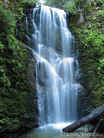 Free Berry Creek Falls Royalty Free Stock Image - 493166