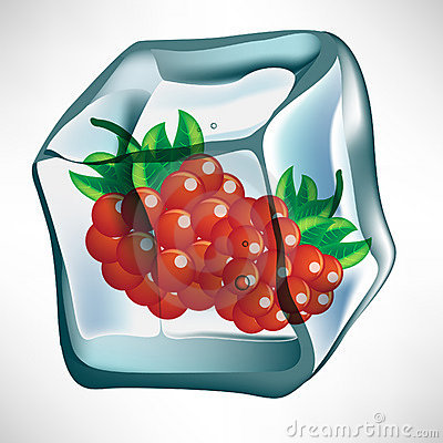 Berry in ice cube
