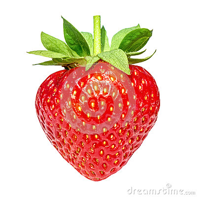 Free Berry Strawberry Isolated On White Background. Royalty Free Stock Image - 97208836