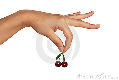 Berry of a sweet cherry in the handle
