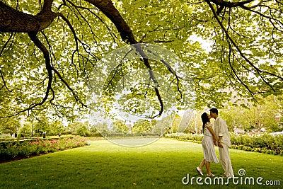 Beso bajo el árbol