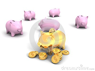 Best golden piggy bank and money dollar coins