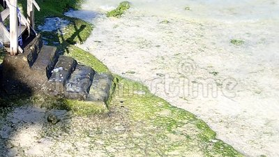 Betonnen trap op het strand van het witte zand stock videobeelden