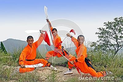 Beväpnad strid