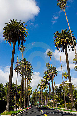 Free Beverly Hills Stock Image - 15389051