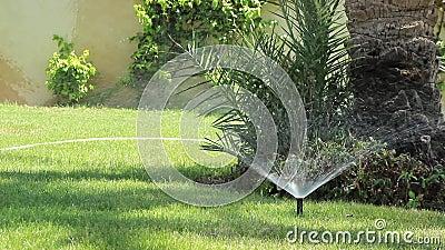 Bewässerungsanlagen Sprinkler sprühen Tropfen Wasser auf das grüne Gras im Garten stock footage