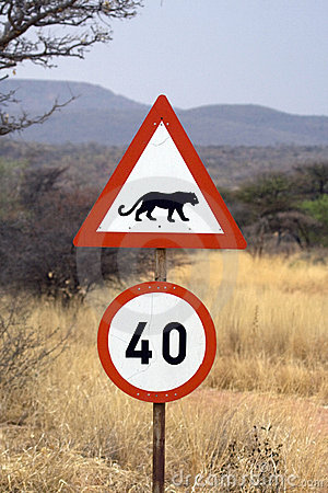 Beware of cheetahs and leopards
