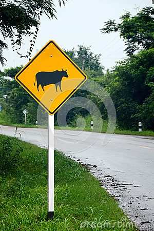 Beware of the cow sign.