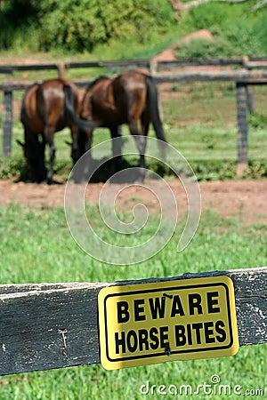 Beware horse bites sign