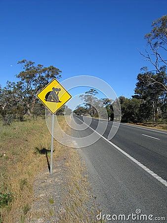 Beware of koala