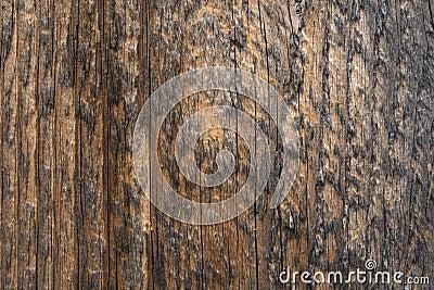 BG-Wood-vertical-lines-02