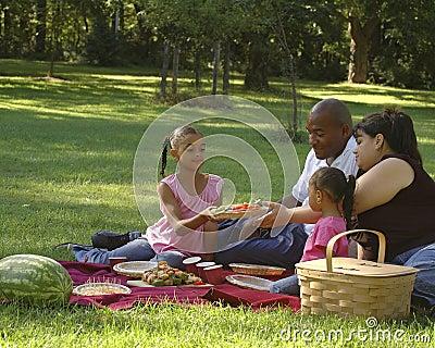 Bi-racial Family Picnic