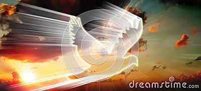 Biały ptak