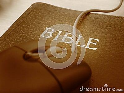 Bibbia e mouse - alto vicino