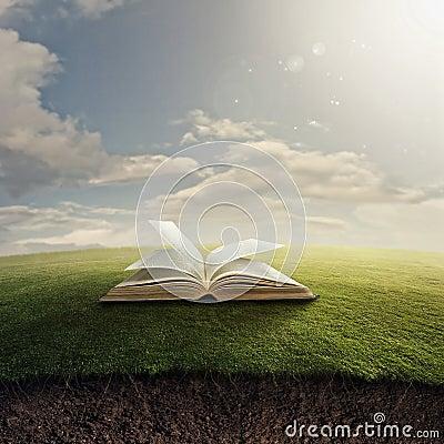 Free Bible On Grass. Stock Photo - 29523610