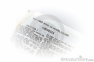 Bible open to genesis vignette