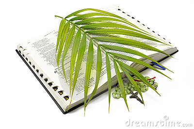 Bible Rosary Palm Sunday