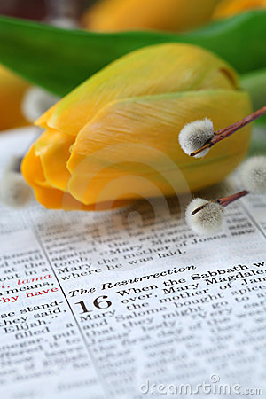 Free Bible With Text In Mark 16 About Resurrection Royalty Free Stock Photo - 13596655
