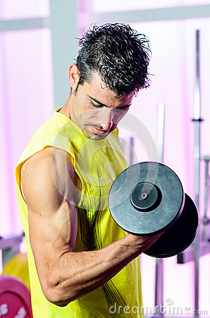 Biceps Muscle Training