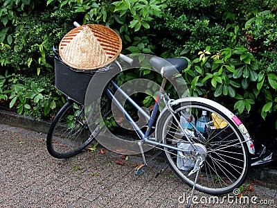 Bicicleta asiática