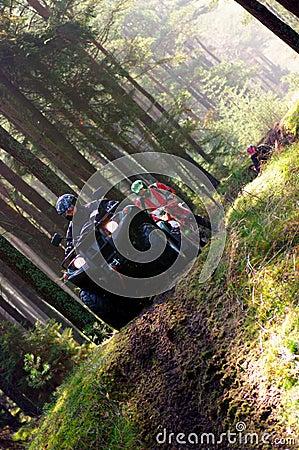 Bicicletas do quadrilátero que competem na floresta