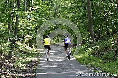 Bicycle всадники