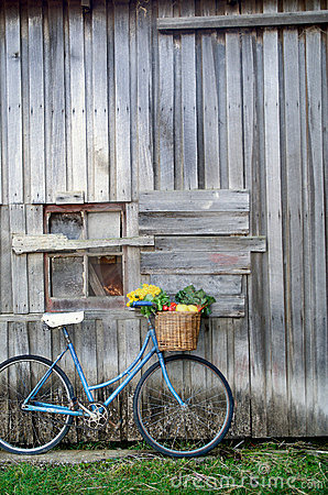 Free Bicycle And Vegetables Stock Photo - 144560