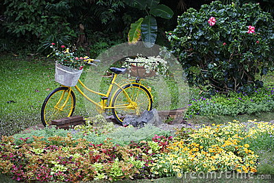 Bicycle in garden