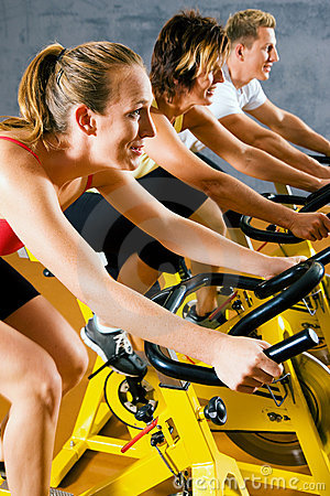 Free Bicycle In The Gym Royalty Free Stock Images - 12398539
