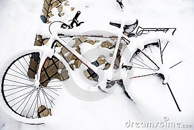 Bicycle orphan