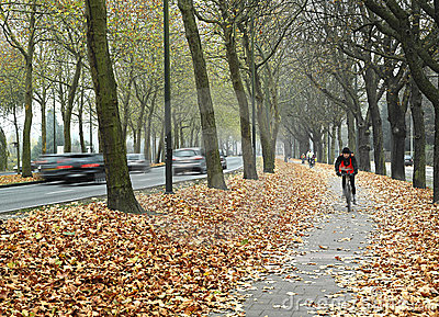 Bicycle path in Brussels Editorial Stock Image