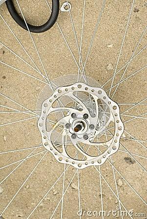 Bicycle spoke