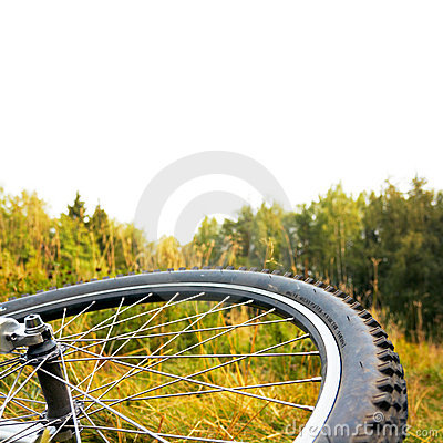 Bicycle wheel at autumn sunset, isolated top part