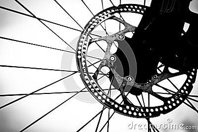 Bicycle wheel (close-up)