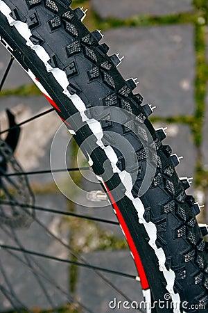Bicycle wheel. Detail 3