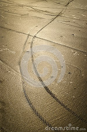 Bicycle wheel tracks