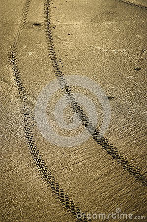 Bicycle wheel tracks