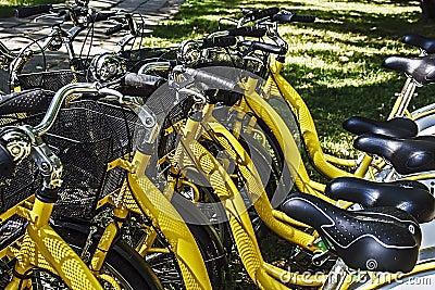 Bicycles.Detail
