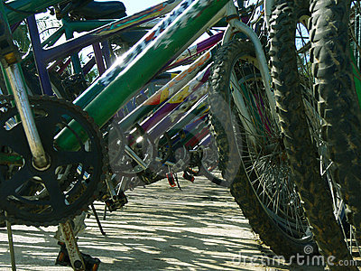 Bicycles parked in bike rack