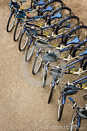 Bicycles Parked in a Row