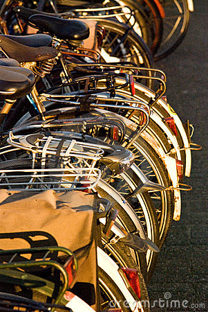 Bicycles in a rack