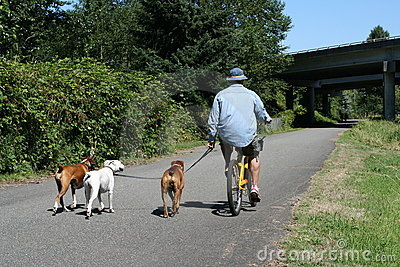 Bicycling with Dogs