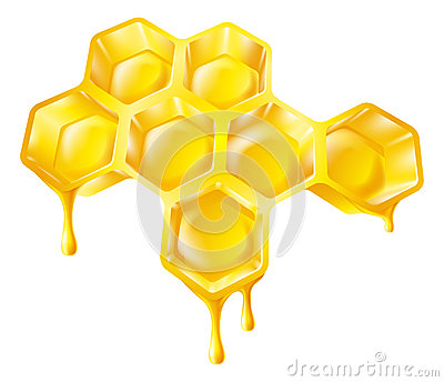 Bienenwabe mit Bratenfetthonig