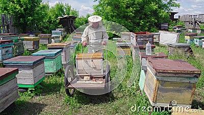 Bienenzüchter rollt einen Wagen in einem Bienenlager in einem Dorf stock footage