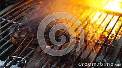 Bifteck grillé savoureux en four banque de vidéos
