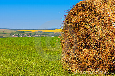 Big bale of straw Stock Photo