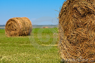 Big bales of straw Stock Photo